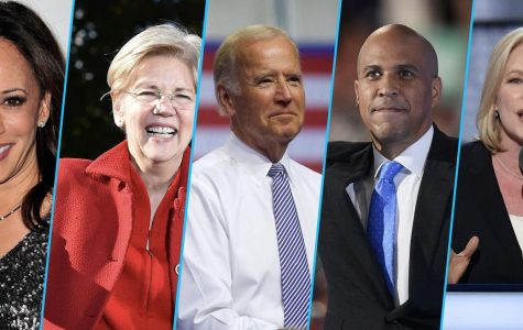 2020 Election Prospects