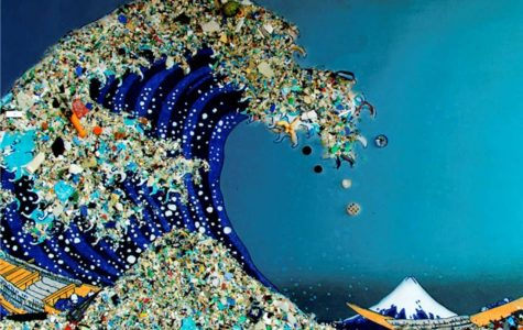 How Plastics Can Affect the Whole World