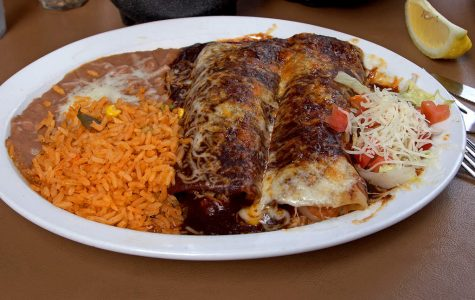 Michael's Super Fantastic Food Reviews- Don Jose's Enchilada Plater
