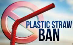 Why Are Straws Bad For the Earth?