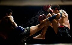 Why Muay Thai And BJJ Are The Best Martial Arts To Learn