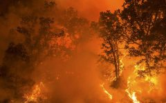 How Climate Change is Affecting California Wildfires