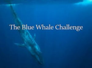 Blue Whale Challenge Back on TikTok
