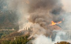 California's 2021 Wildfire Season is Going to Be Terrible