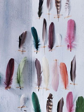 The Meaning of Colored Feathers