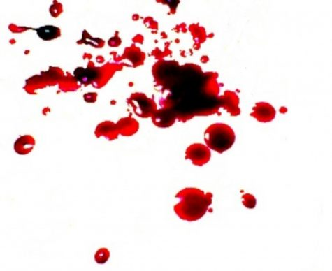 Bloodbornes Interesting Story