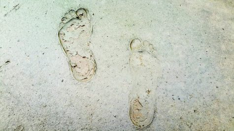 Oldest Footprint Found in New Mexico